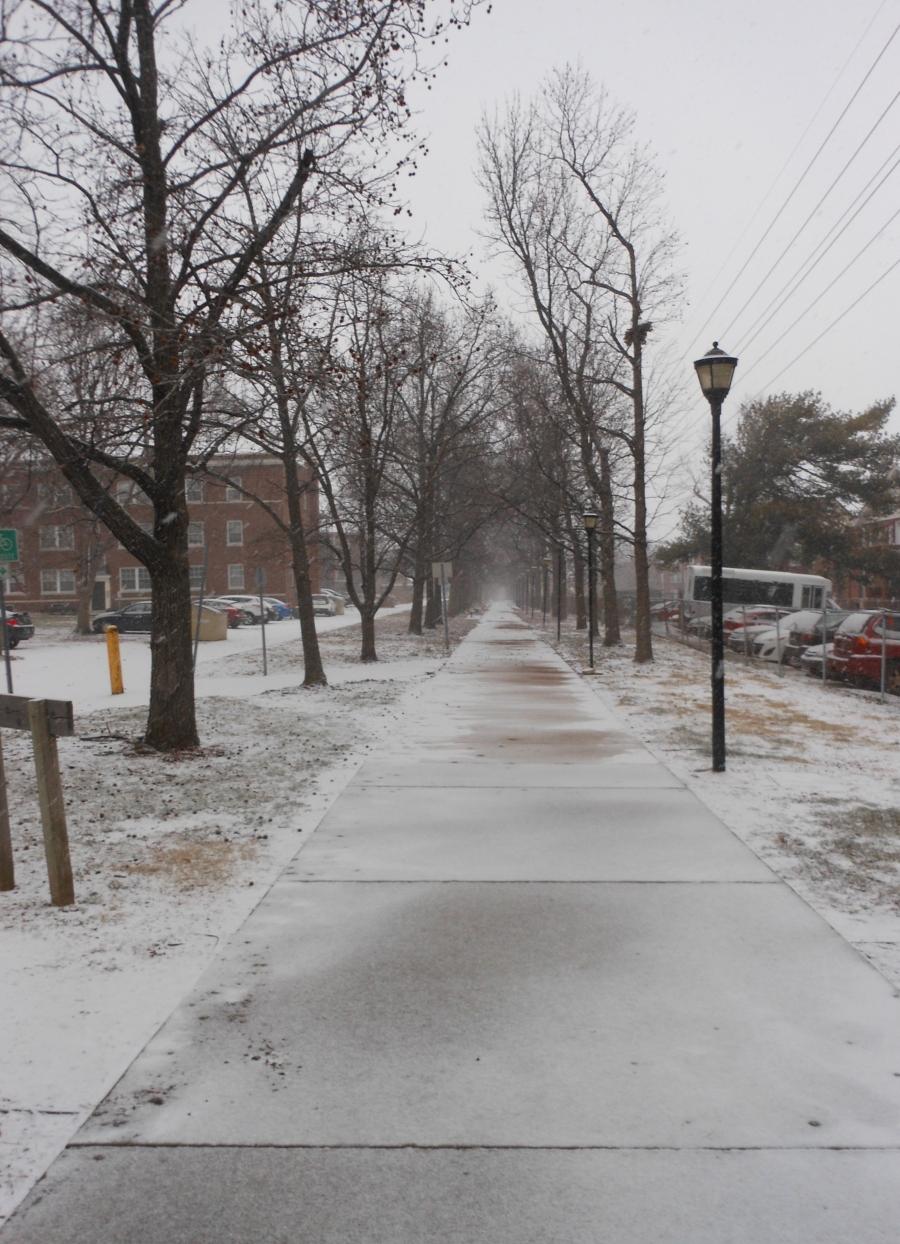 ackert snow